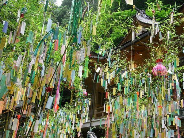 le-hoi-tanabata-nha-tban